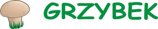 logo grzybek 2016